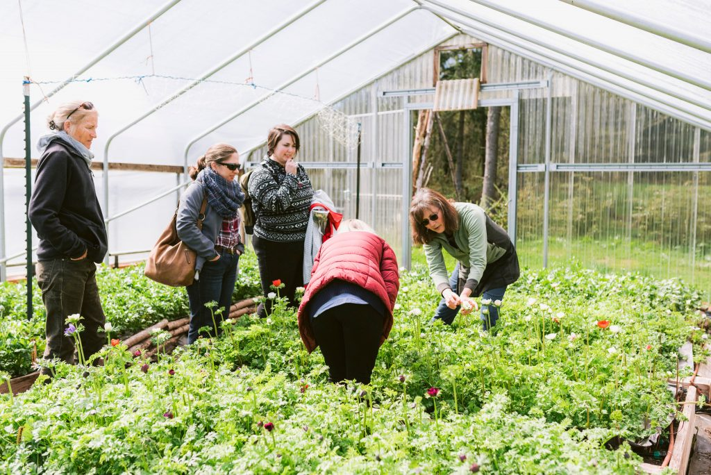 Professional flower grower Sonshine Farm hosted the farm tour during the Whidbey Flower Workshop